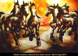Marie-Andrée Leblond - chevaux - horses