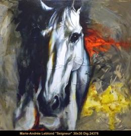 Marie-Andrée Leblond - cheval - horse -