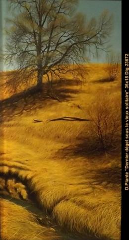 Daniel Plante - paysage - landscape- Hyperréaliste - hyperealist