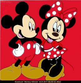 Pop Art - Mickey - Minnie