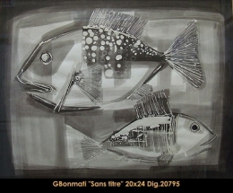 Gabriel Bonmati - poisson - fish