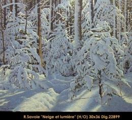 Dig: 22899- Richard Savoie