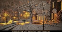 Richard Savoie - Montreal - Hiver - Winter